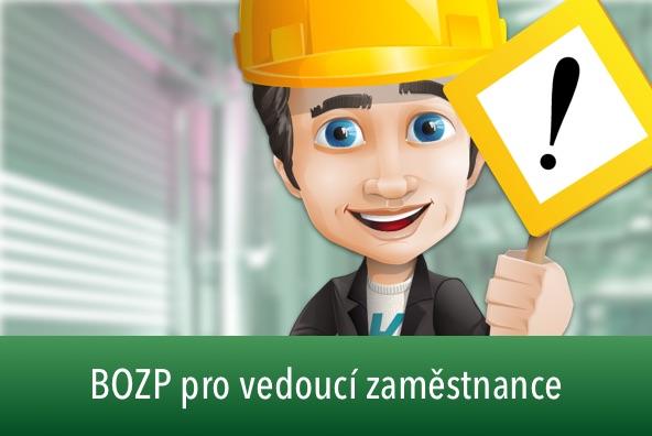 20201124104828 id 60d0ef55 b269 459c b4f6 a4f2ec5fa823  bozp pro vedouci zamestnance demo sm