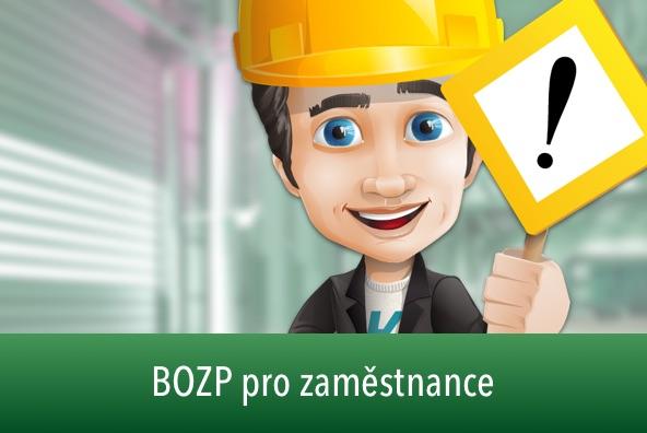 20201124105023 id ad50e624 ec90 42c0 b1ff 9d0b3c8dc954  bozp pro zamestnance demo sm